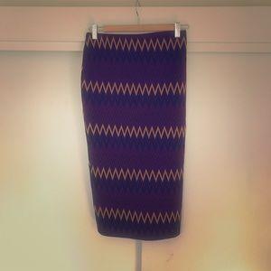 Zara winter stretch skirt